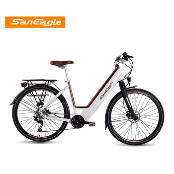 2017 saneagle 36V x 250W brushless Mid motor Central motor  electronic bicycle e-bike