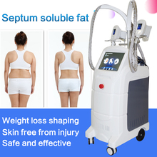 Professional cryo laser face slimming shaper machine for sale