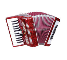 YW860 Parrot accordion,26Key,48BS keyboard accordion