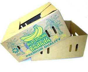 Wholesale Foldable Banana Carton Box With Die Cut Handle