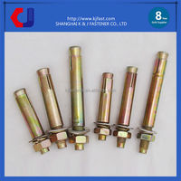 Customized Made Standard Size Metal Brass Stainless Steel Expansion Anchor Bolt