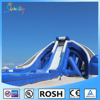 HOT Design Funny Adult Size Amusement Park Inflatable Water Slide with Pool