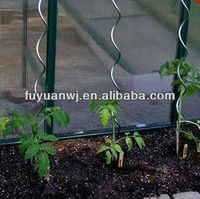 tomato plant spiral support stakes ( professional manufacturer )