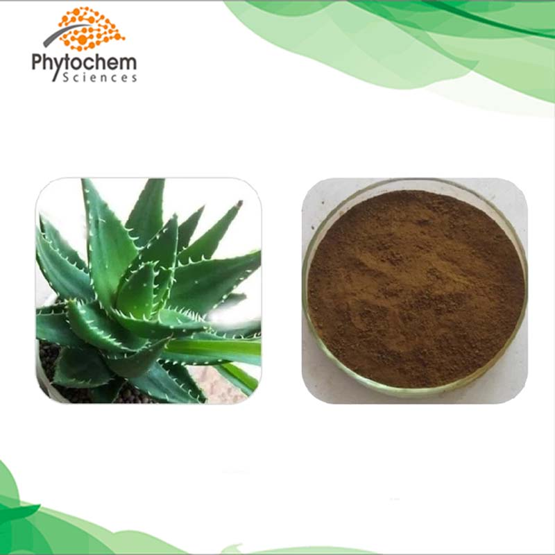 Aloe Vera Extract powder.jpg