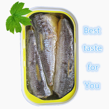 canned sardine fish in vegetable oil from morocco
