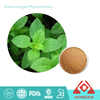 High Quality Pepper Mint Extract Powder ,Total Isoflavones 6%