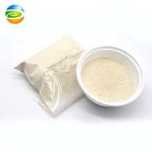 wholesale oven dry taintless garlic extract powder