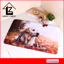 PVC backing digital or heated printing absorbent bath mat rugs outdoor mat