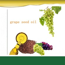 supply beauty product grape seed extract grape seed oil