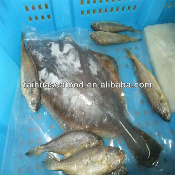 deep sea silver fish and cooked frozen grouper fish