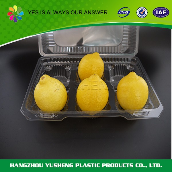 Disposable different shape food container,take out food container