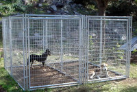 wholesale hot-dipped galvanized 6ftX5ft welded mesh Dog wire Kennel