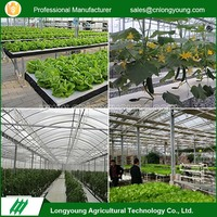 Greenhouse Irrigation Hydroponic Growing System