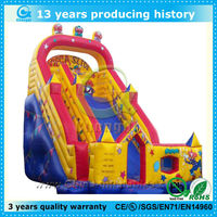 wonderful big inflatable water slide for sale