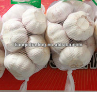 500g normal white garlic price