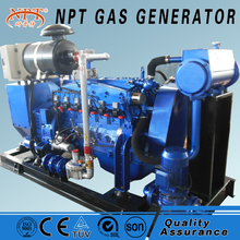 China CE approved 75kw coal gas electricity generation for sale