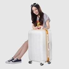 ABS PC film trolley luggage case