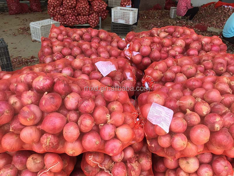 yellow onion exported from Shandong of China