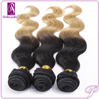 ISO 9001 2015 Ombre Color Weft Curly Indian Human Hair