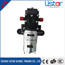 Factory directly sale dC small water pump motor / small electric water pump price