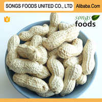 Raw Peanuts Prices Songs Foods Company