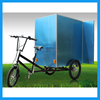 Adult Tricycle Electric 3 Wheels Bike