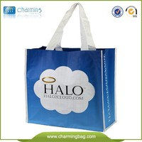 ECO Logo Printed Fashion cloth bag promotional pp woven bag recyclable shoppiing bag