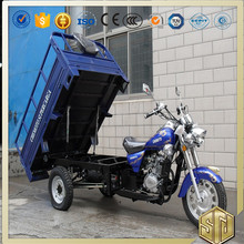 Big Power 3 Wheel Gas Cargo Tricycle With Enclosed Cargo Box 250cc For Sale