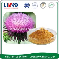 Organic Superfood Natural Milk Thistle Fruit Extract Powder