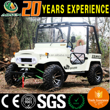300cc UTV two seats mini jeep 4 wheel sightseeing vehicle for sale