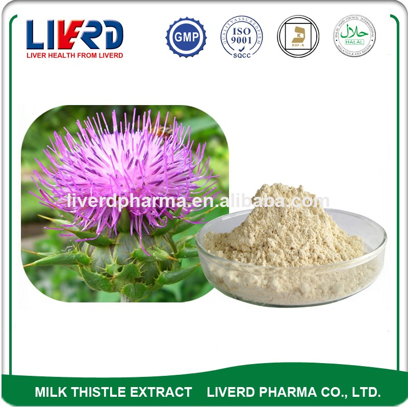 Herbal Medicine Blessed Thistle Powder Silybum Marianum 98%