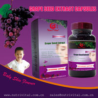 Grape seed extract capsule Antioxidant Dietary Supplement