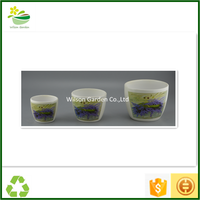 Large indoor planters cheap ceramic cups discount garden pottery