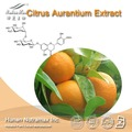 GMPManufacturer Supply Citrus aurantium Extract Powder /Neohesperidin dihydrochalcone NHDC, Synephrine 6%-98%,flavones 25%