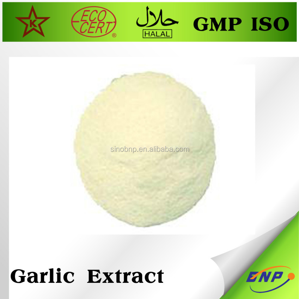 bnp GMP ISO pure nature garlic extract allicin powder