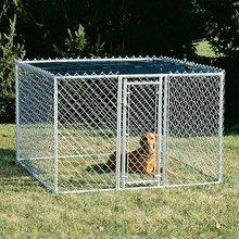 Indoor Dog Kennels /Cute galvanized Dog Kennel/Cheap Chain Link Dog Kennels