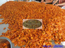 2015 new crop dried Chinese apricot without add sugar