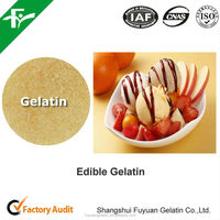 Food and Beverage Gelatin Powder/Health Food Gelatin Powder with Best Price