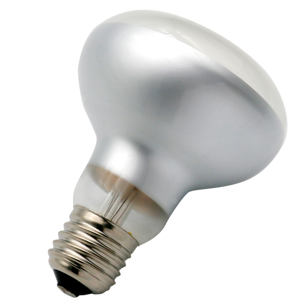 best selling high quality R80 2W led light bulb made in China