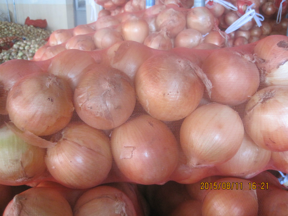 Hot Sale New Crop Different Size Fresh onion