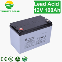 Yangtze free maintenance home battery storage for 100ah