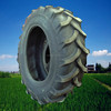 /product-detail/r-1-16-9-34-farm-tractor-tyre-with-good-quality-for-hot-sale-60609658166.html