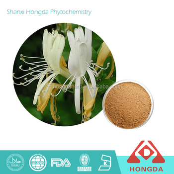 Honeysuckle flower extract with high purity chlorogenic acid powder