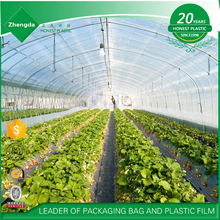China Factory Manufacturer supply high quality long life greenhouse film