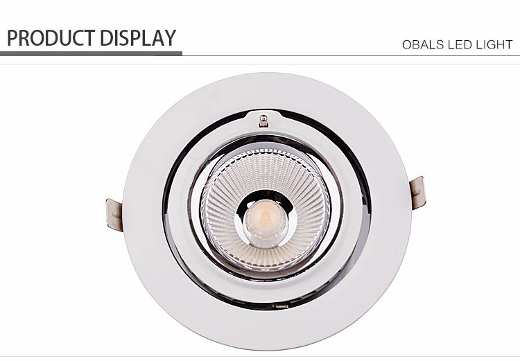 Waterproof Led Outdoor Rgb Spot Lights Led Ceiling Light Cob Led Spotlight Light