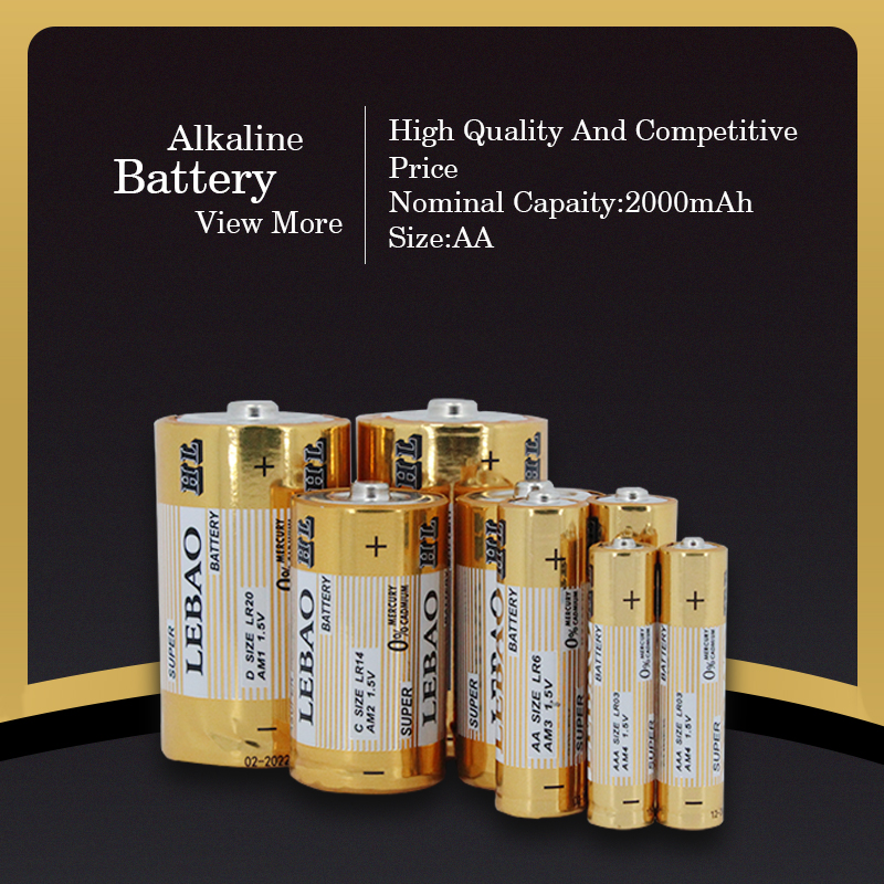 China Leading Battery Factory Top Quality LR6 1.5V Dry Cell aa alkaline battery