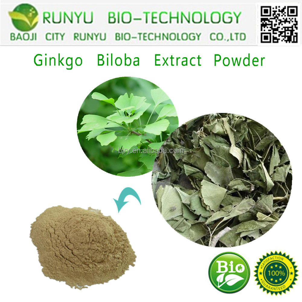RUNYU Assessment Supplier 100% Natural Organic High Quality Ginkgo Biloba P.E.