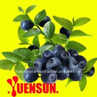 100% Natural Bilberry Extract/Anthocyanin 25% UV /Anti-aging Function
