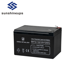Emergency Lighting System UPS Dry Battery 12V for UPS