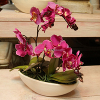 Home table wedding decor silk flowers artificial butterfly orchid bonsai